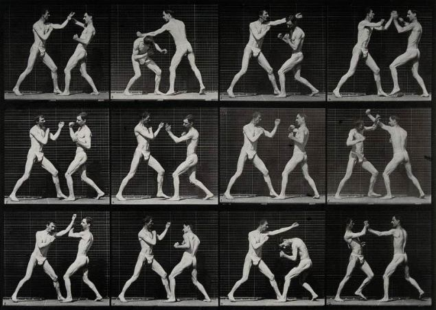 Two-men-boxing.-Photogravure-after-Eadweard-Muybridge-1887-CC-BY-NC